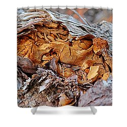 Shower Curtain featuring the photograph Torn Old Log by Ann E Robson