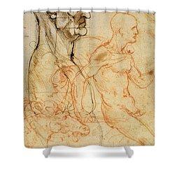 Torso Of A Man In Profile Shower Curtain by Leonardo da Vinci