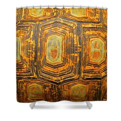 Tortoise Abstract Shower Curtain
