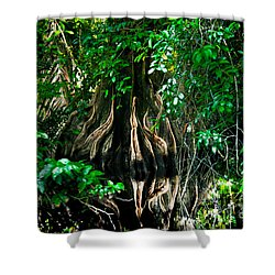 Tortuguero River Shower Curtain by Gary Keesler