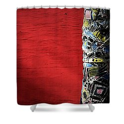 Shower Curtain featuring the photograph Totem On Red by Nadalyn Larsen