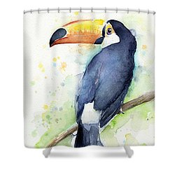 Toucan Watercolor Shower Curtain by Olga Shvartsur