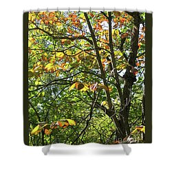 Touch Of Autumn Shower Curtain by Ann Horn