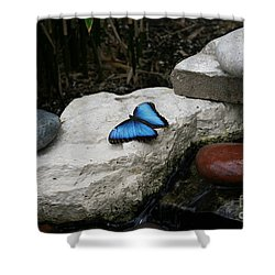 Touch Of Blue Shower Curtain by Judy Whitton
