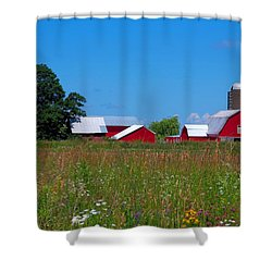 Shower Curtain featuring the photograph Touch Of Color by Dave Files