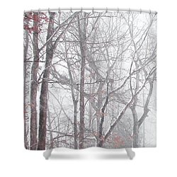 Touch Of Fall In Winter Fog Shower Curtain