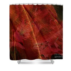 Touch Of The Orient Shower Curtain