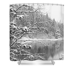 Touch Of Winter Shower Curtain by Diane Bohna