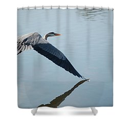 Touch The Water With A Wing Shower Curtain by Randy J Heath