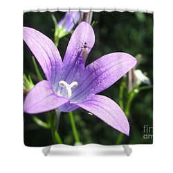 Touchdown  Shower Curtain by Martin Howard