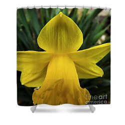 Shower Curtain featuring the photograph Touched By An Angel by Robyn King
