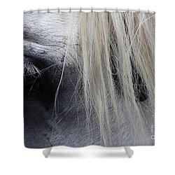 Touched My Heart Shower Curtain by Fiona Kennard