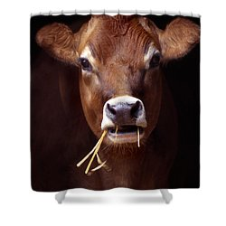Toupee Shower Curtain by Skip Willits