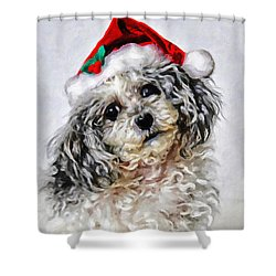 Toy Poodle- Animal- Christmas Shower Curtain