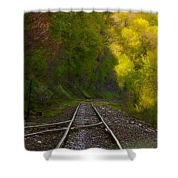 Track Through The Hillside  Shower Curtain by Peggy Franz