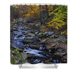 Tracking Color - Big Hunting Creek Catoctin Mountain Park Maryland Autumn Afternoon Shower Curtain by Michael Mazaika