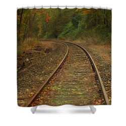 Tracking Thru The Woods Shower Curtain by Karol Livote