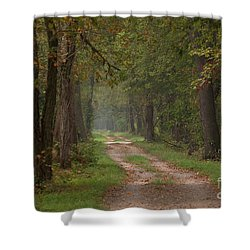 Trail Along The Canal Shower Curtain by Jeannette Hunt