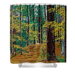 Trail At Wason Pond Shower Curtain