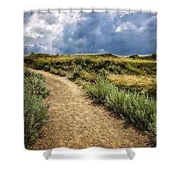 Trail In Badlands In Alberta Canada Shower Curtain by Elena Elisseeva