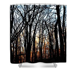 Shower Curtain featuring the photograph Trail Light Fading by Carlee Ojeda