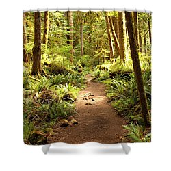Trail Through The Rainforest Shower Curtain
