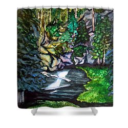 Trail To Broke-off Shower Curtain by Lil Taylor