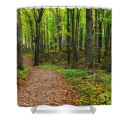 Trail To Miners Falls Shower Curtain by Rachel Cohen