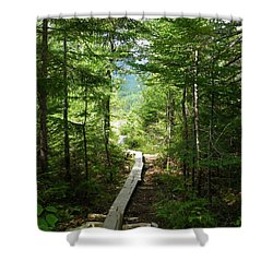 Trail To Sandy Stream Pond Shower Curtain