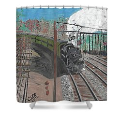 Train 641 Shower Curtain