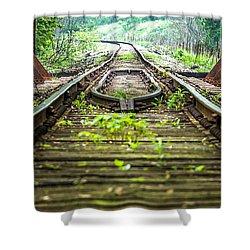 Train Trestle 2 Shower Curtain
