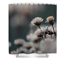 Tranquil Shower Curtain by Bruce Patrick Smith