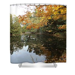 Tranquil Getaway Shower Curtain by Brenda Brown