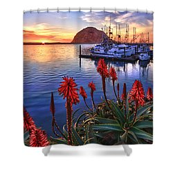 Tranquil Harbor Shower Curtain by Beth Sargent