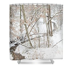 Tranquil Winters Creek Shower Curtain