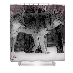 Shower Curtain featuring the photograph Tranquility by Bianca Nadeau