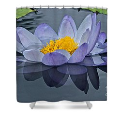Tranquility Shower Curtain by Byron Varvarigos