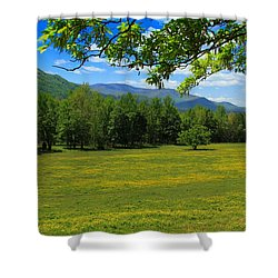 Shower Curtain featuring the photograph Tranquility by Geraldine DeBoer