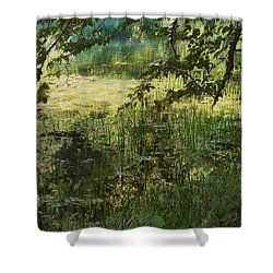 Tranquility Shower Curtain by Mary Wolf
