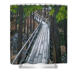 Shower Curtain featuring the painting Tranquility Trail by Sharon Duguay