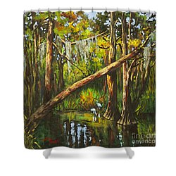 Tranquillity Shower Curtain by Dianne Parks