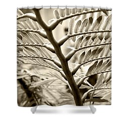 Translucidity Shower Curtain