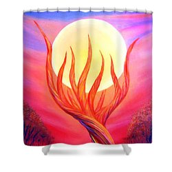 Shower Curtain featuring the painting Trapped Moon by Lilia D