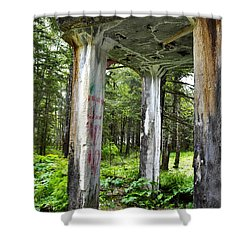 Treadwell Mine Building Shower Curtain by Cathy Mahnke