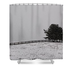 Tree And Fence In Snow Storm Shower Curtain