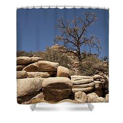 Tree At Joshua Tree Shower Curtain by Amanda Barcon