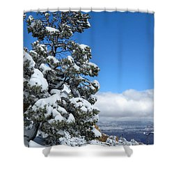 Tree At The Grand Canyon Shower Curtain by Laurel Powell