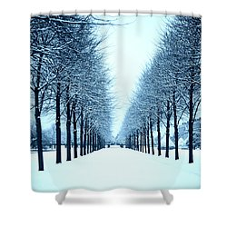 Tree Avenue In Snow Shower Curtain