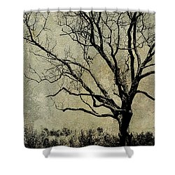 Tree Before Spring Shower Curtain