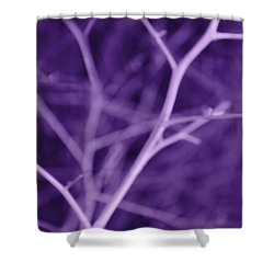 Tree Branches Abstract Purple Shower Curtain by Jennie Marie Schell